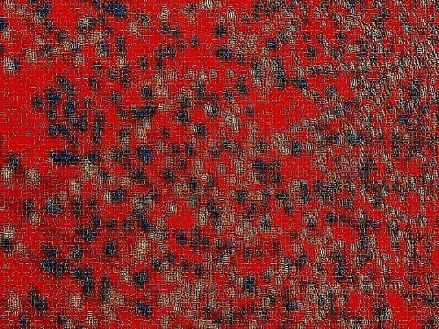 MLepetit 1 rouge
