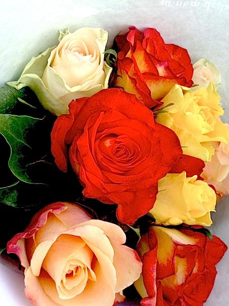 roses 060314