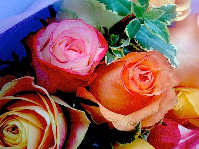 roses 050514