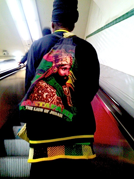 17 rastafari the lion of judah