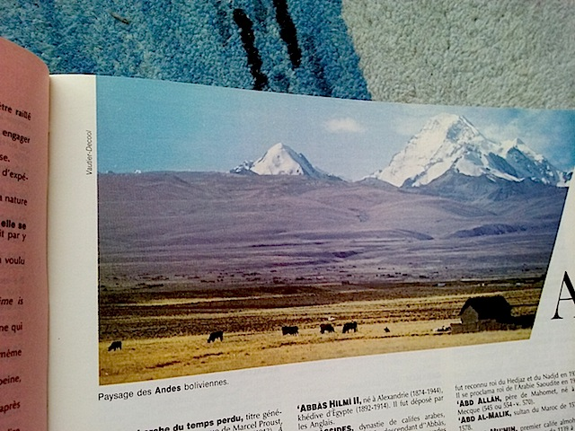 a comme andes (boliviennes)