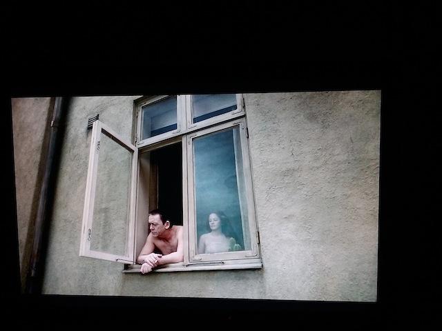 fenêtre pigeon