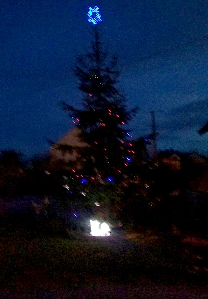Montigny 3 sapin lumières