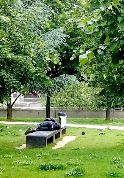 dormir dans le parc 6 juin 16