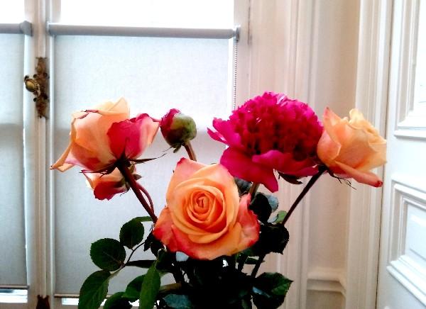 fleurs du 21 juin