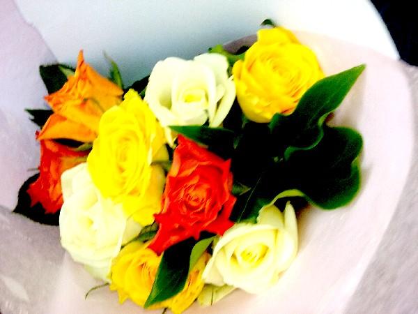 roses 27 06 16