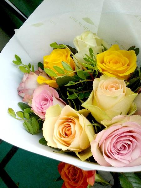 roses du 18 8 16