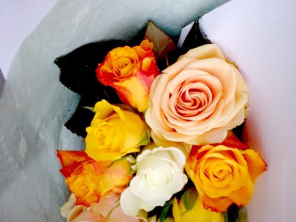 roses-19-09-16