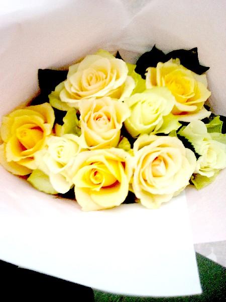 roses 6 9 16
