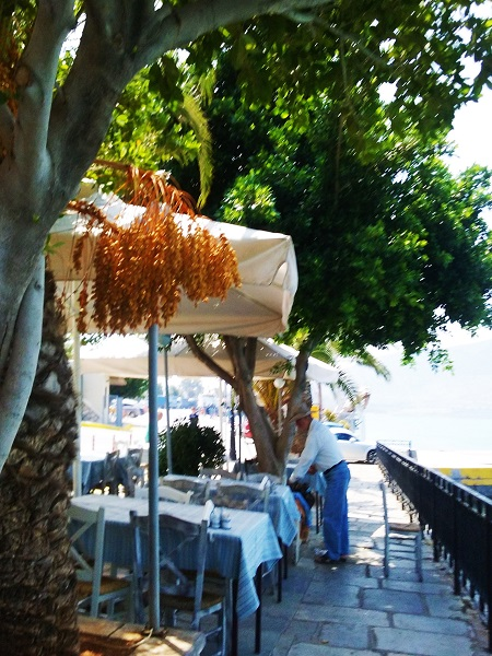 chalkis-homme-penche