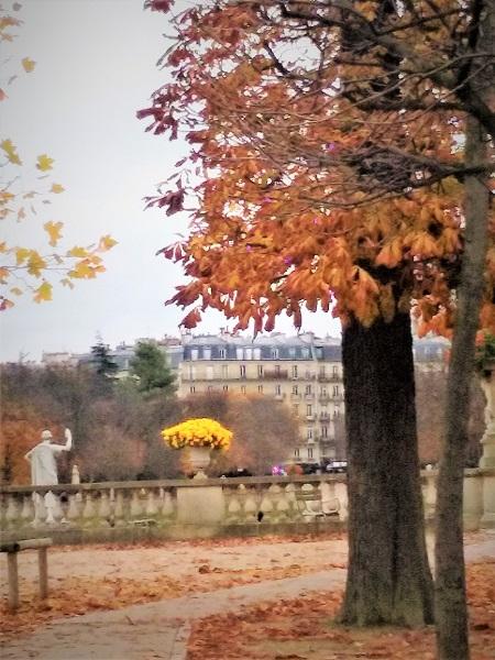 luxembourg-fleurs-jaunes