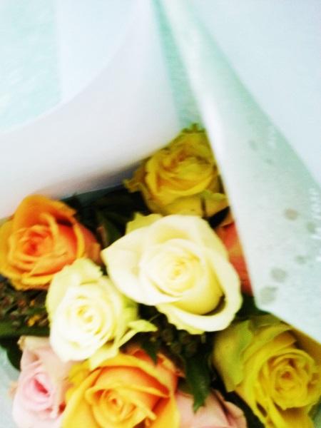 roses-10-11-16-2