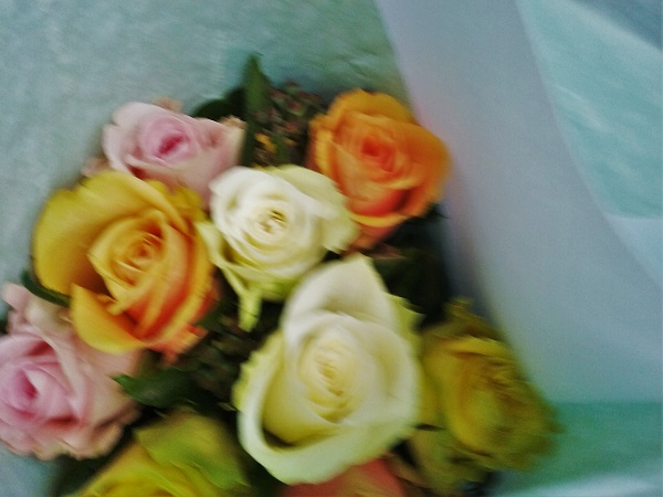 roses-1011-16