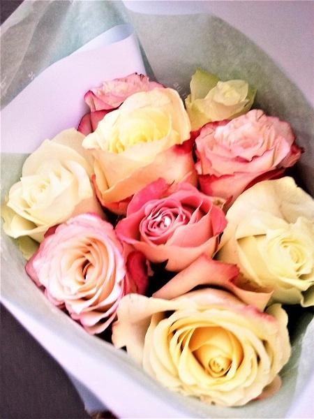 roses-24-11-16